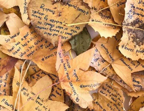 New York: poesie scritte sulle foglie cadute. Il progetto di Elena Zaharova