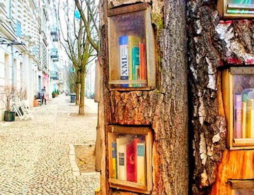 Book Forest a Berlino: così gli alberi diventano biblioteche
