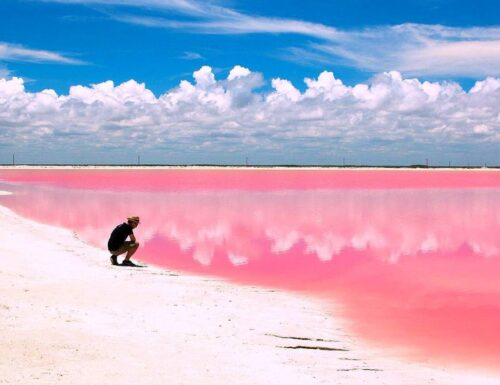 Las Coloradas, l'incantevole laguna rosa nello Yucatán